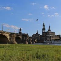 on the bank of the elbe