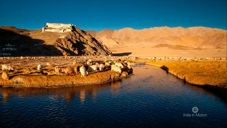 Sunset over Hanle Monastery