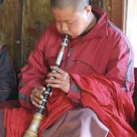 Young monks studying music at the Sengor monastery.