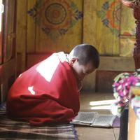 Young monks studying at the Sengor monastery.
