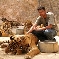 A tourist (aka me ;) posing with the tigers..