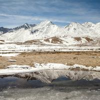 Winter reflections of the Pangong Range