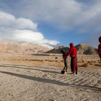 Winter cricket at Hanle