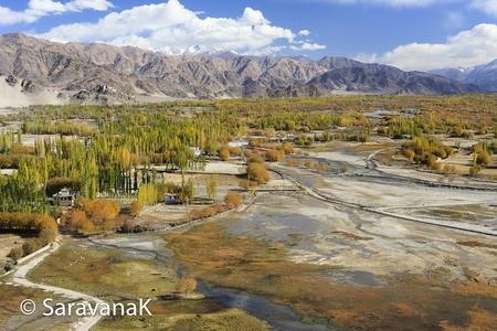 autumn scenery showing the shey and thiksey villages near leh, ladakh.