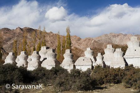 white chortens outside the shey palace..