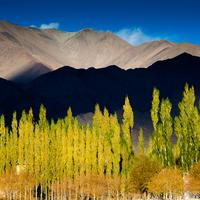 sunset throwing shadows over the mountain ranges near shey village. Leh, Ladakh.