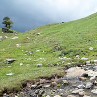 A fresh water spring originating from the Pandu Ropa meadows.