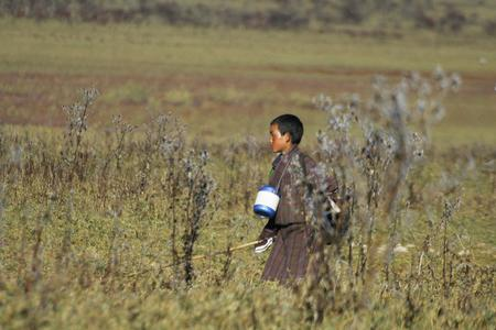 A Bhutanese kid walking to school at the Phobjikha valley in central bhutan.