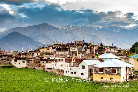The beautiful Nako village with its Pea fields and colorful prayer flags fluttering above every house in the village.