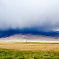 Gathering strom clouds over the green plains of Hanle.